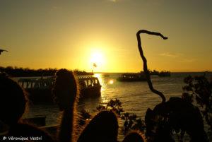 Ile Santa Cruz (Equateur – Galapagos)