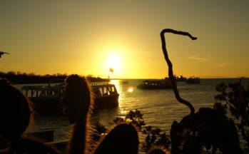 Ile Santa Cruz (Equateur - Galapagos)