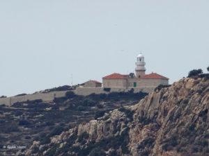 Espagne [Majorque] – Ile Dragonera – Cap Es Llebeig