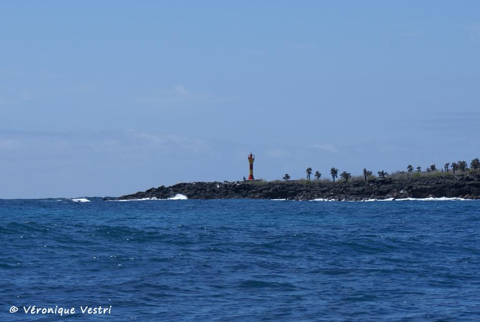 Equateur [Galapagos] - Ile Santa Cruz