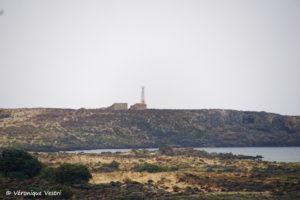 Grèce [Crète] – Elafonisi