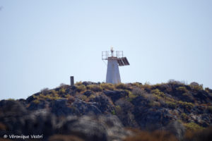 Grèce [Crète] – Kali Limenes Ile Megalonisi