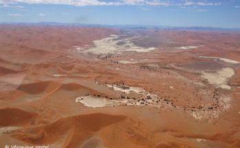 Swakopmund, dunes désert Namib (Namibie)